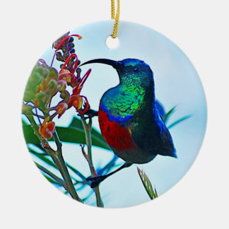 Hummingbird ruby throated Double-Sided ceramic round christmas ornament