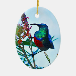 Hummingbird ruby throated Double-Sided oval ceramic christmas ornament