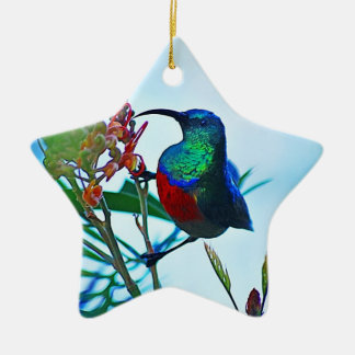 Hummingbird ruby throated Double-Sided star ceramic christmas ornament