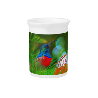 Hummingbird ruby throated drink pitcher