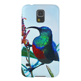 Hummingbird ruby throated galaxy s5 cases