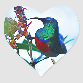Hummingbird ruby throated heart sticker