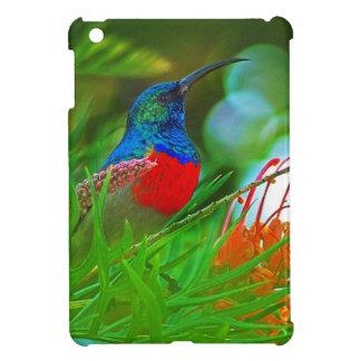 Hummingbird ruby throated iPad mini case