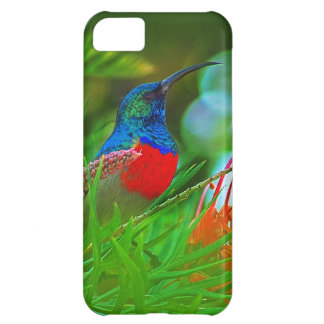 Hummingbird ruby throated iPhone 5C cover