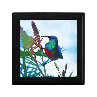 Hummingbird ruby throated keepsake box