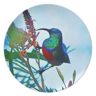 Hummingbird ruby throated party plate