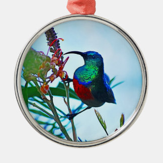 Hummingbird ruby throated round metal christmas ornament