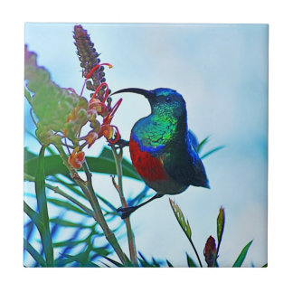 Hummingbird ruby throated small square tile