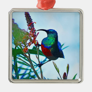 Hummingbird ruby throated square metal christmas ornament