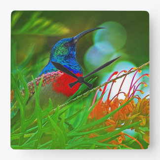 Hummingbird ruby throated square wall clock