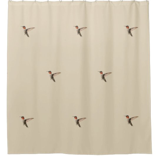 Superb Hummingbird Shower Curtain
