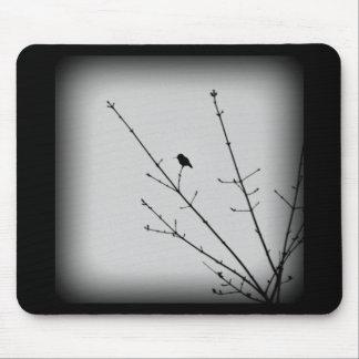 Hummingbird Silhouette Mousepad