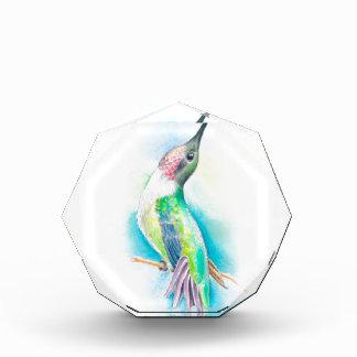 Hummingbird Singing Acrylic Award