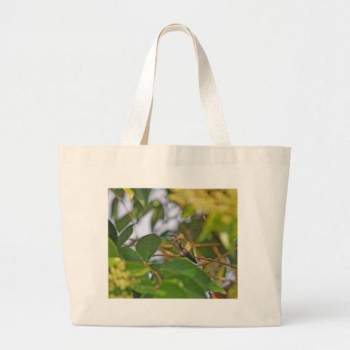 Hummingbird Sitting in a Privet Tree Tote Bags