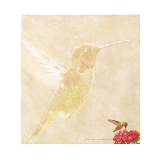 Hummingbird - SMALL Notepad/Memo Pad