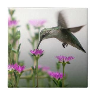 Hummingbird Small Square Tile