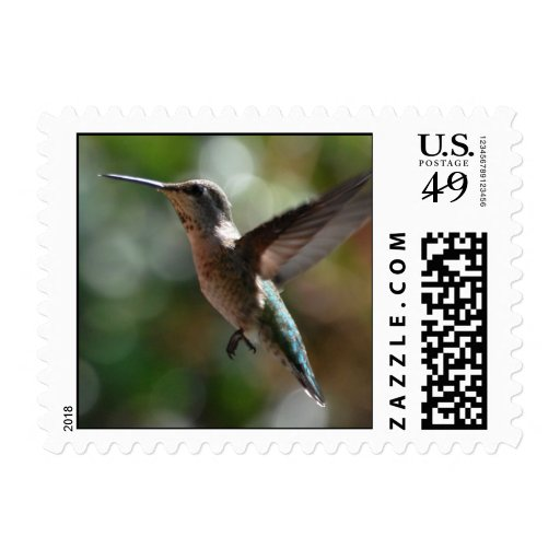 Hummingbird, small stamps