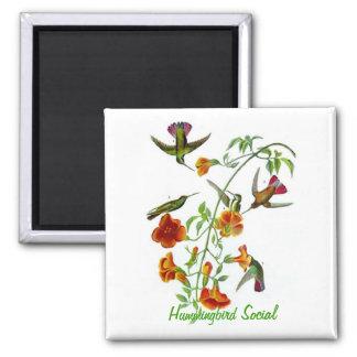Hummingbird Social 2 Inch Square Magnet