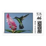 hummingbird stamp