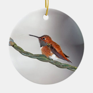 Hummingbird Sticking Out Tongue Ceramic Ornament