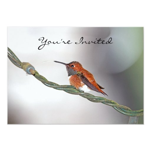 Hummingbird Sticking Out Tongue Personalized Invite