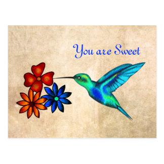 Hummingbird Postal