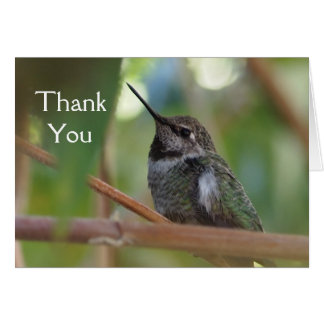Hummingbird thank you card