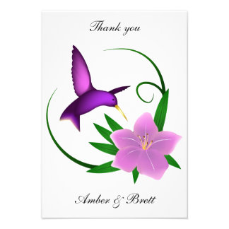 Hummingbird thank you note invites