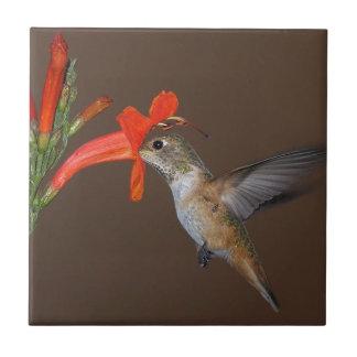 HUMMINGBIRD CERAMIC TILES