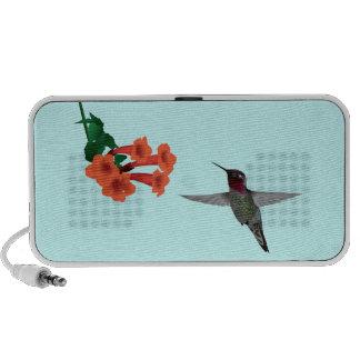 Hummingbird Travelling Speaker