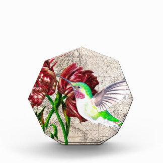 Hummingbird Tulip Map Award