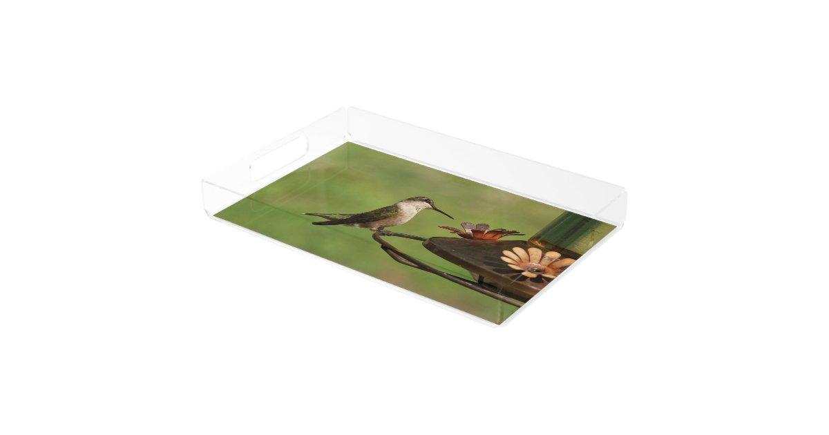 Hummingbird Vanity Tray Serving Tray Zazzle