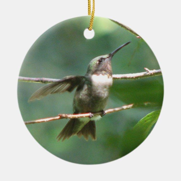 Hummingbird Wings Ceramic Ornament
