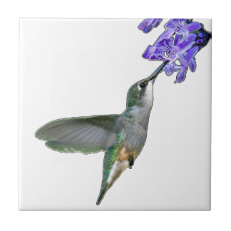 Hummingbird with Mona Lavender Ceramic Tiles