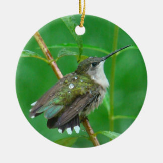 Hummingbird with Wings Spread Ceramic Ornament