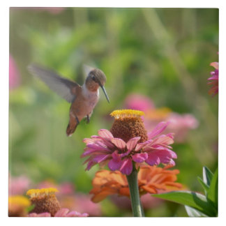 Hummingbird with Zinnias Ceramic Tile
