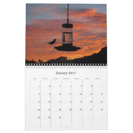 HummingbirdFeederCam.com 2012 Calendar