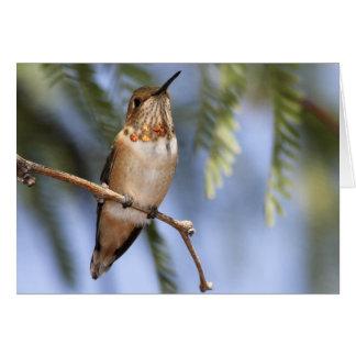 Hummingbirds 136 card