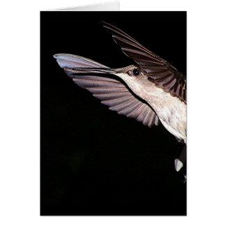 Hummingbirds 2005-0177a card