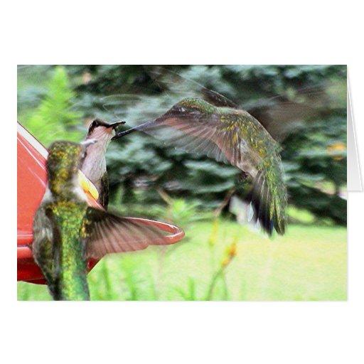 Hummingbirds 2005-0808 greeting card