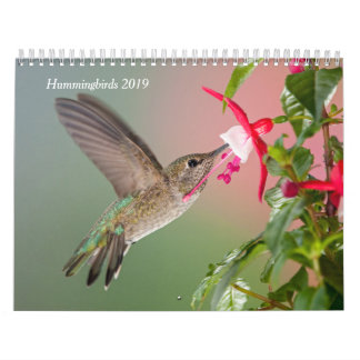 Hummingbirds 2019 Calendar