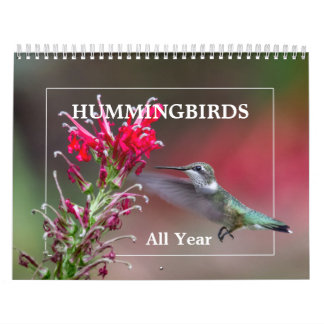 Hummingbirds All Year Calendar