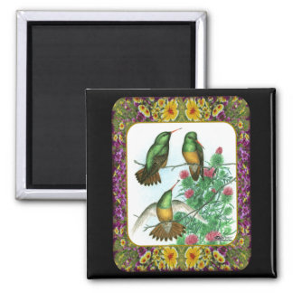 Hummingbirds and Flowers #1 Magnet
