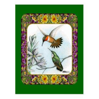 Hummingbirds and Flowers #2 Postcard