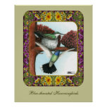 Hummingbirds and Flowers #3 Posters