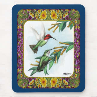 Hummingbirds and Flowers #4 Mouse Pad