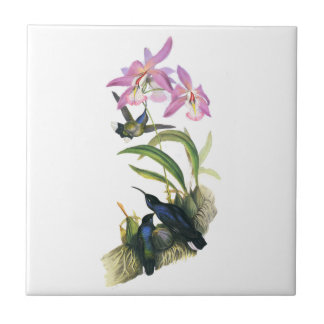 Hummingbirds and Pink Orchids Ceramic Tile