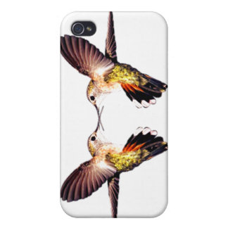 Hummingbirds birds animal feathers flying pretty case for iPhone 4