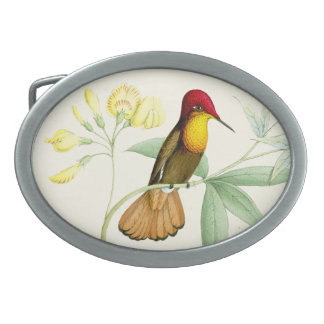 Hummingbirds Birds Flowers Floral Animals Wildlife Oval Belt Buckle