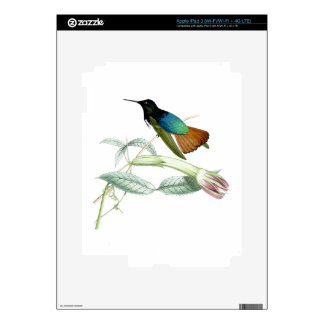 Hummingbirds Birds Flowers Floral Wildlife Animals iPad 3 Decals
